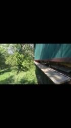 Kuba J. - zachytil včelky na video, ale video bohužel přidat nejde - tak snad je na fotce najdete :)
