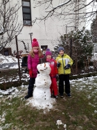 Sněhuláková výzva